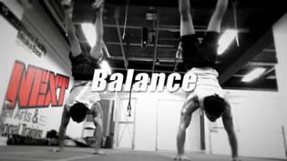 トレーニングプログラム サンプル映像